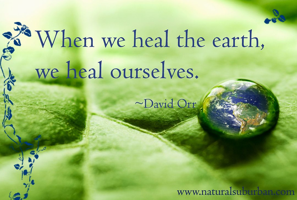 """When we heal the earth, we heal ourselves."" - David Orr environmental quotes make a difference organics"