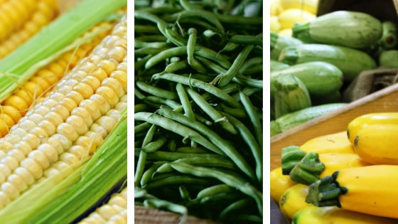 Beans corn and squash three sister companion planting