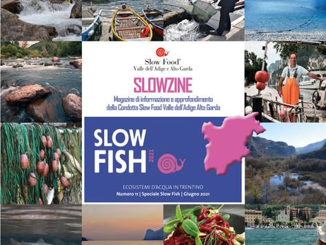 Slowzine n. 11 - Gli ecosistemi d'acqua in Trentino