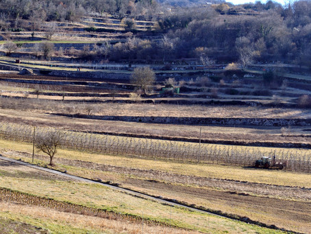 La Val di Gresta nel registro dei paesaggi rurali storici