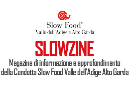 Slowzine n. 3 | ottobre 2020