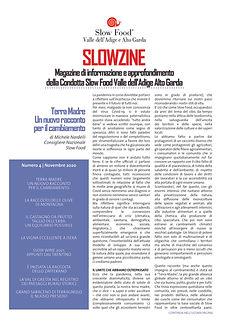 Slowzine (2).jpg