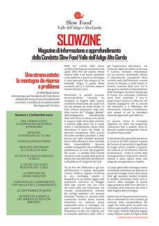 Slowzine (1).jpg