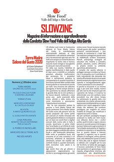 Slowzine (3).jpg