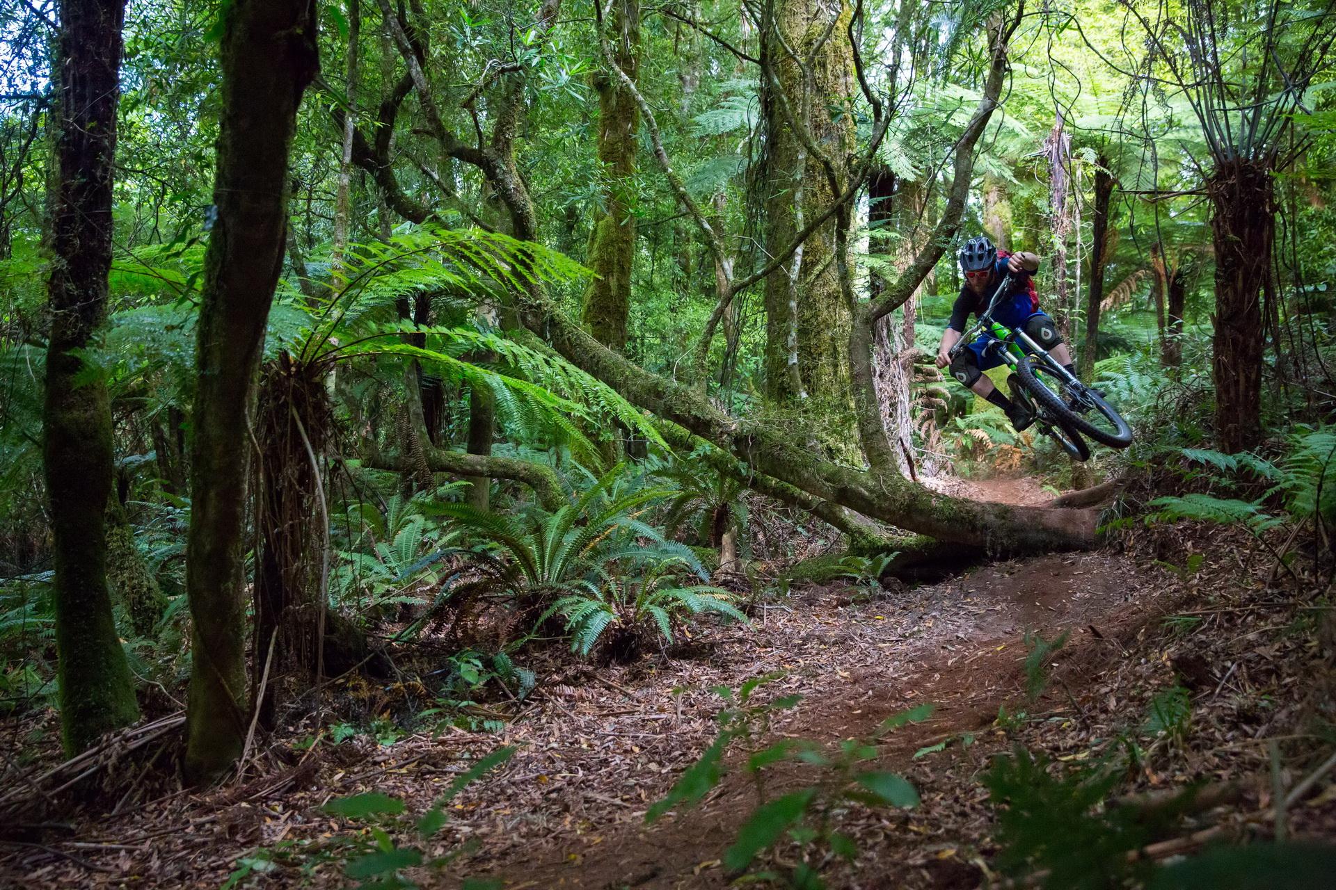 GM_MH_Rotorua-1123.jpg