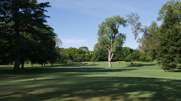 William Land Park