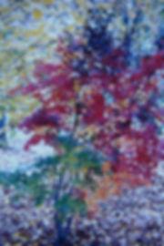 52A_4-ColorMaple.jpg