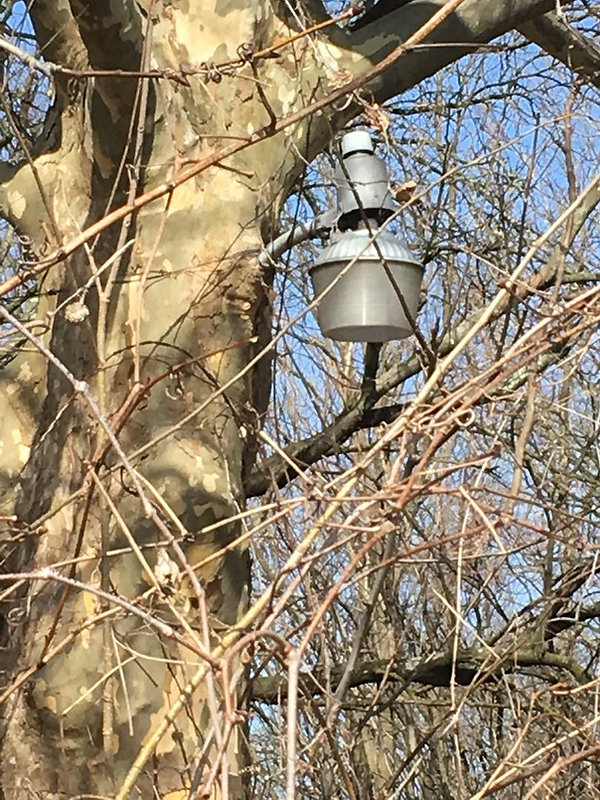 188C_London_Lamp__.JPG