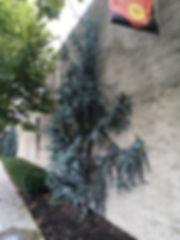 121C_ArtHotel3.JPG