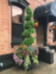 93A_Topiary_Sprial1.JPG