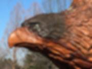 114D_Eagle.JPG