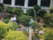 95C_MiniatureTrees4.JPG