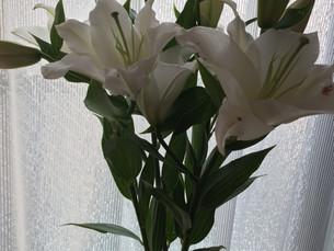 花のある生活を(^^♪