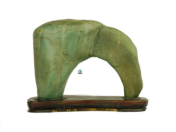 Arco Suiseki piedra