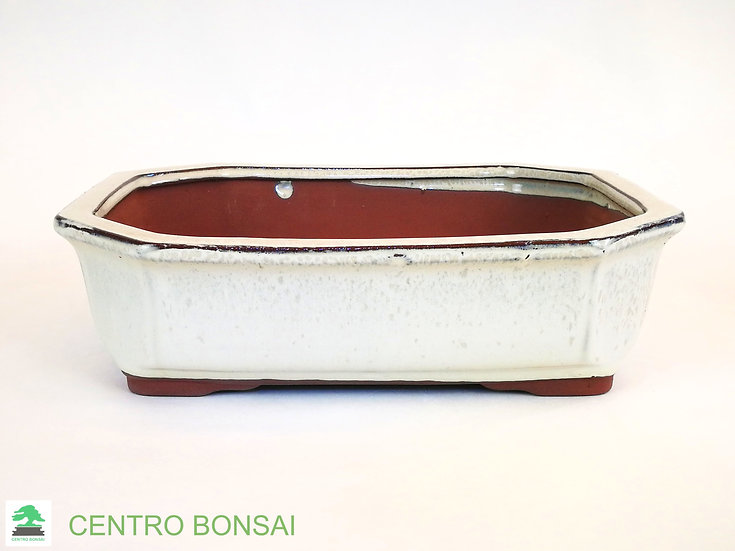 Maceta Bonsái Rectangular 27 cm