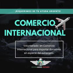 Apoyo en Comercio Internacional y aduanas