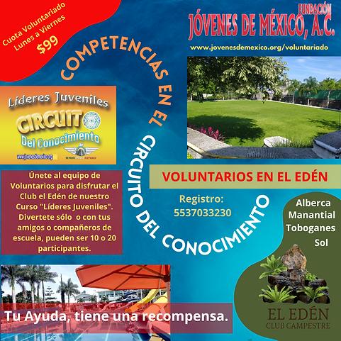 invitación voluntarios.png