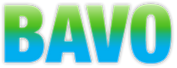 BAVO-text-logo.png