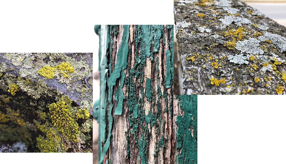Moss, chipping paint, details