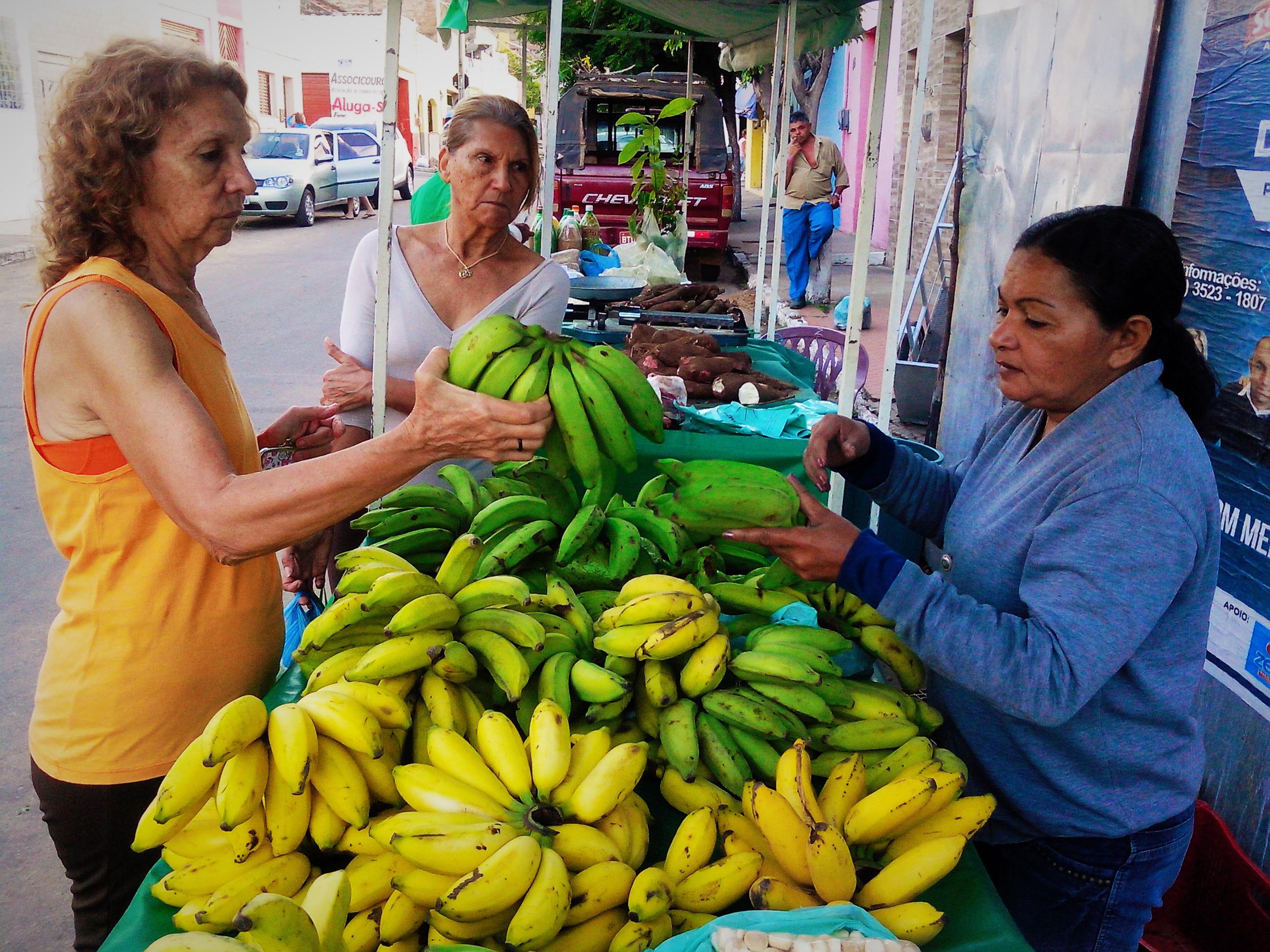 Bananas produzidas pelas famílias