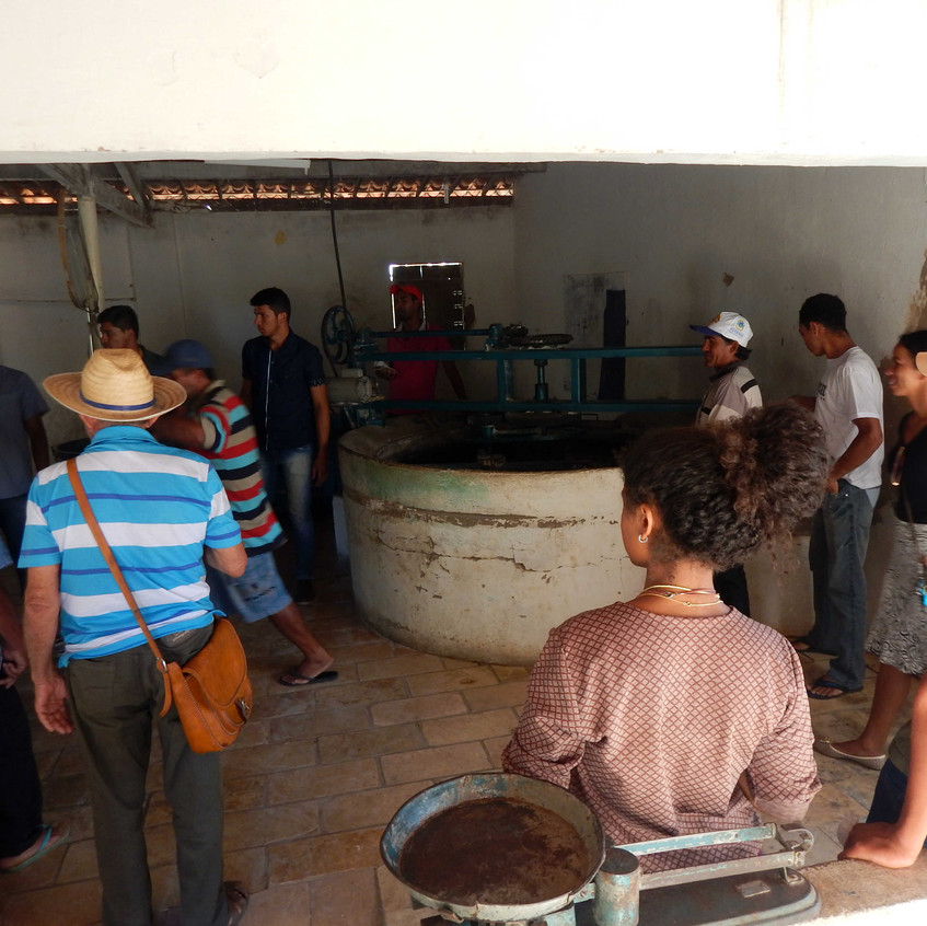 4°_Encontro_Agricultores_Chapada_do__Araripe_17