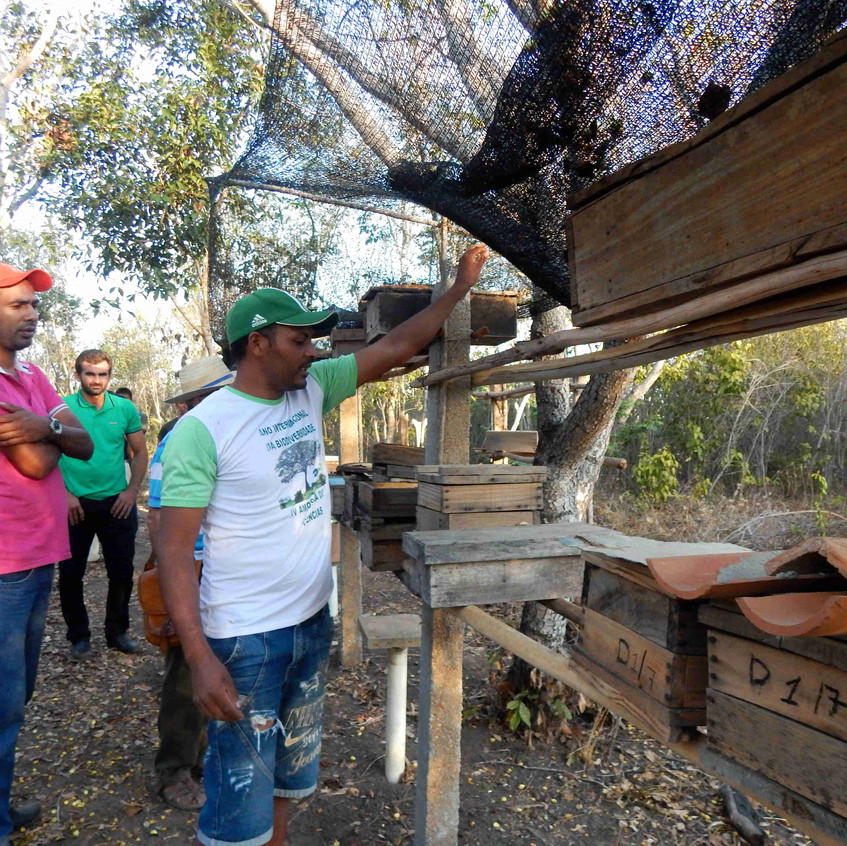 4°_Encontro_Agricultores_Chapada_do__Araripe_23