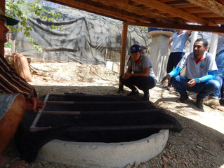 Projeto Quintais Produtivos nas comunidades do Cariri Oeste