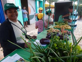 Santana do Cariri recebe sua primeira Feira Agroecológica