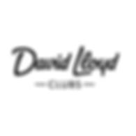 david lloyd logo.png