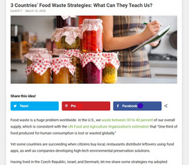 3 Countries' Food Waste Strategies: What Can They Teach Us?