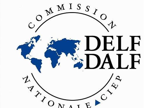 DELF JUNIOR A1 - ESTUDANTE AF - R$172,00