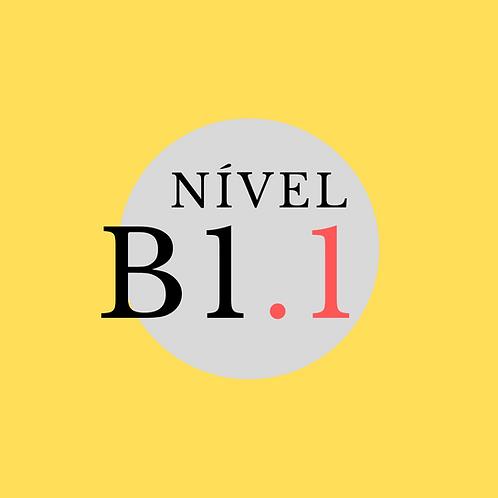 Curso Regular B1.1 - Sexta, 16:00- 19:00 (Início 26/02/21)