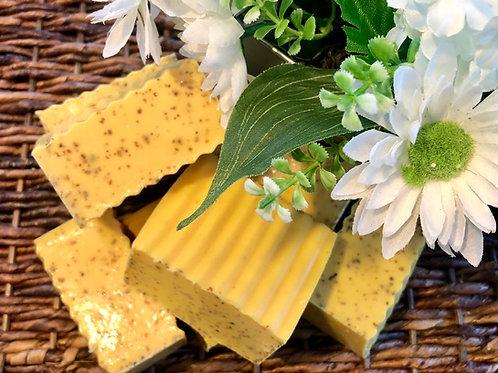 Carrot Ginger Tumeric Acne Facial Soap (5.5oz)