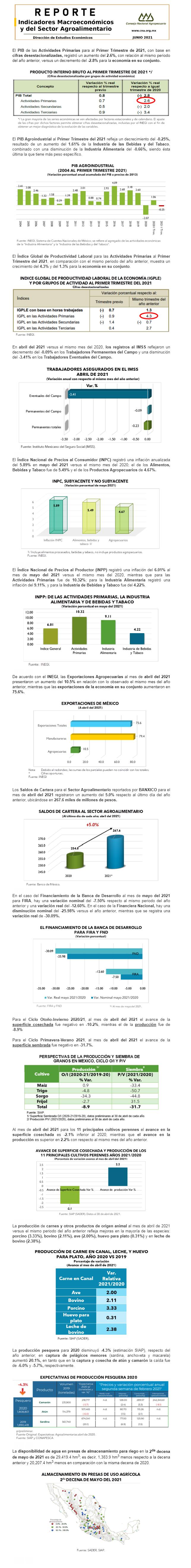 Reporte de Indicadores Macroeconómicos y Sectoriales del Sector de junio 2021.