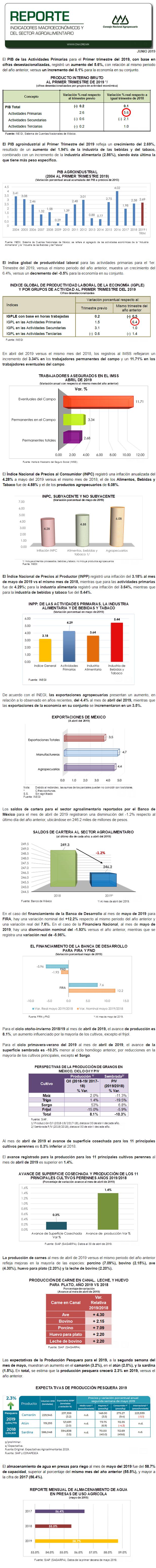 REPORTE DE INDICADORES MACROECONÓMICOS Y SECTORIALES DEL MES DE JUNIO DEL 2019