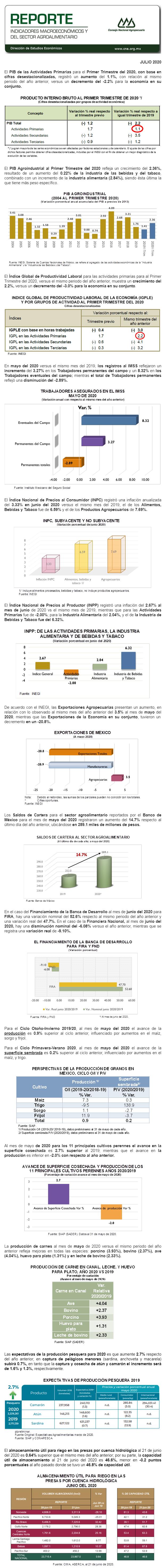 Reporte de Indicadores Macroeconómicos y Sectoriales del Sector Julio 2020