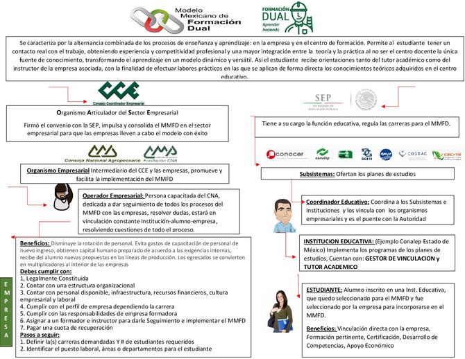 Proyectos Fundación CNA