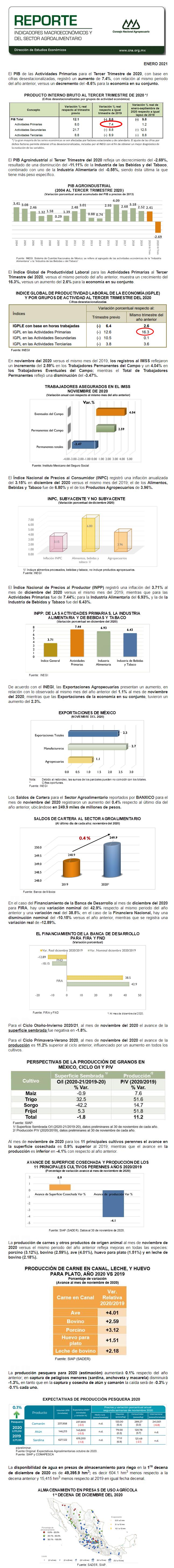 Reporte de Indicadores Macroeconómicos y Sectoriales del Sector Enero 2021