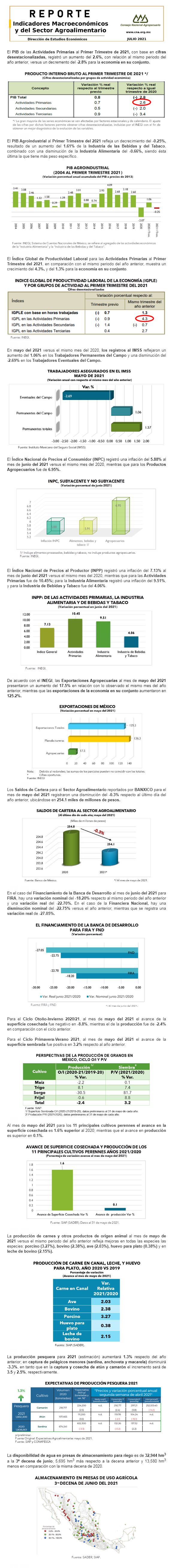 Reporte de Indicadores Macroeconómicos y Sectoriales del Sector julio 2021