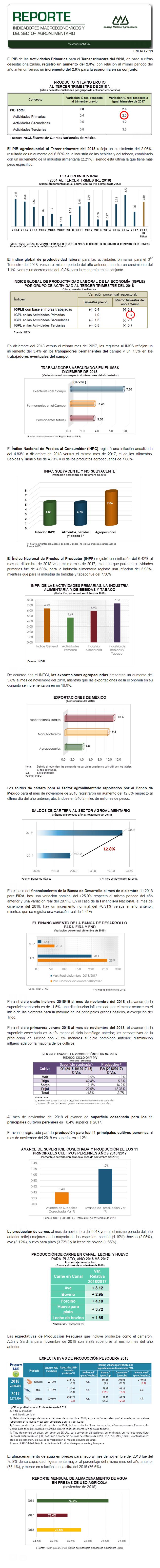 REPORTE DE INDICADORES MACROECONÓMICOS Y SECTORIALES DEL MES DE ENERO DEL 2019