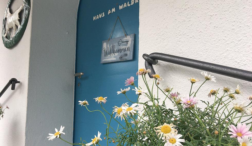 Eingang Waldrand.jpg