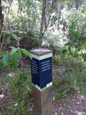 Kauri Glen sign post.png
