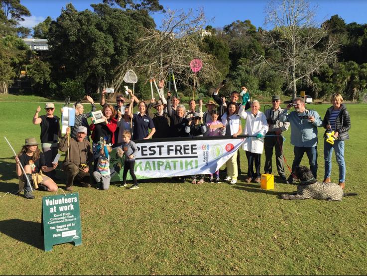 Kauri Point Centennial Park Volunteer Da