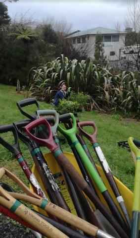 Kauri Glen Halo planting day.png