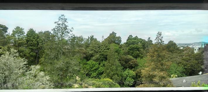 View of Le Roys Bush.png