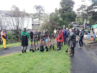 Kauri Glen Halo planting day 3.png