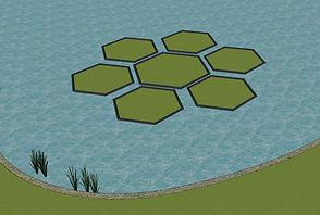 Hexagon Floral_Website_1.jpg