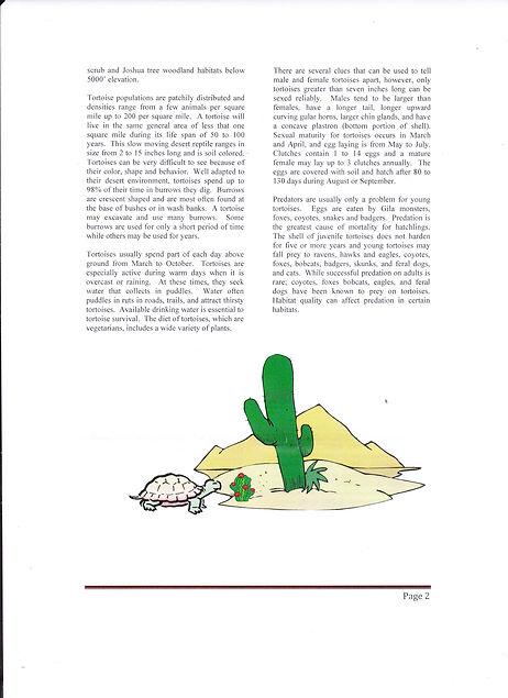 Desert Tortoise page 2.jpg