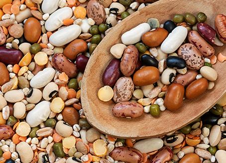 Las legumbres: Nutritivas, saludables, riquísimas