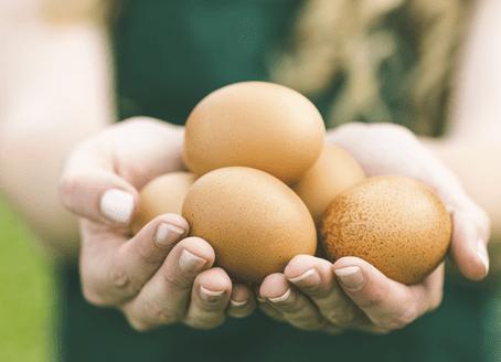 El huevo, un alimento redondo